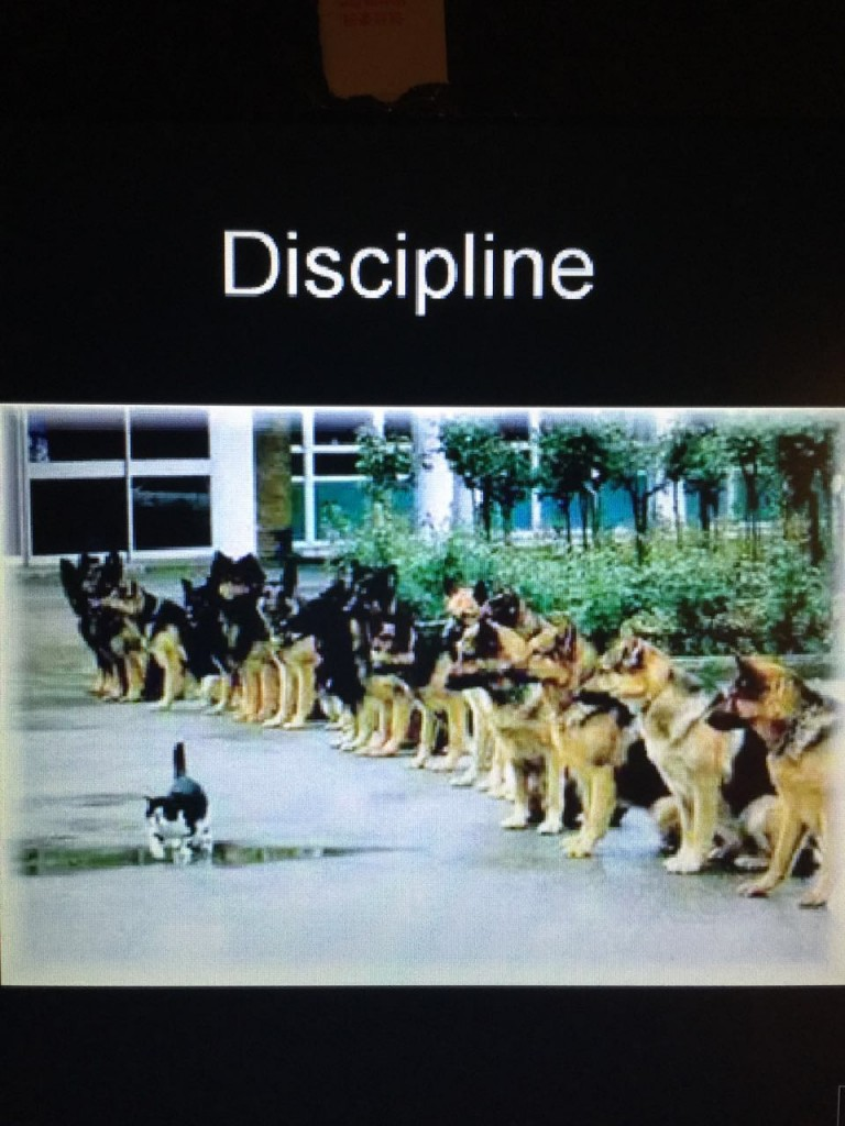 Being Disciplined