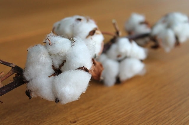 Cotton Futures - Futures Contract Specifications and Cotton Facts