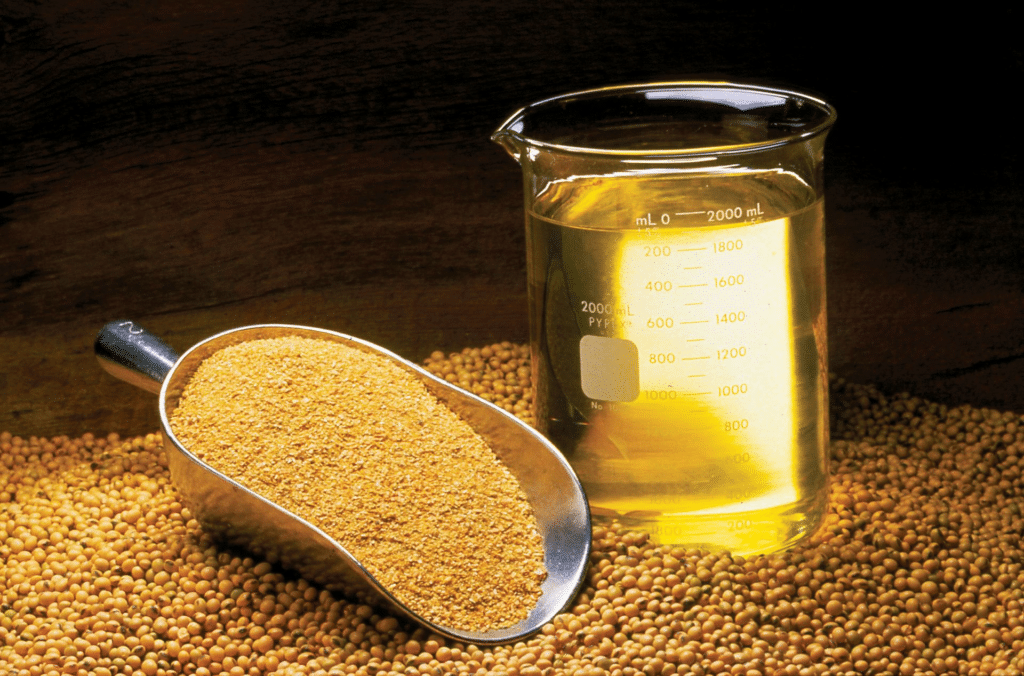 Soybean Oil Futures Guide - Contract Specifications, Soybean Oil Facts, Strategies & Seasonality