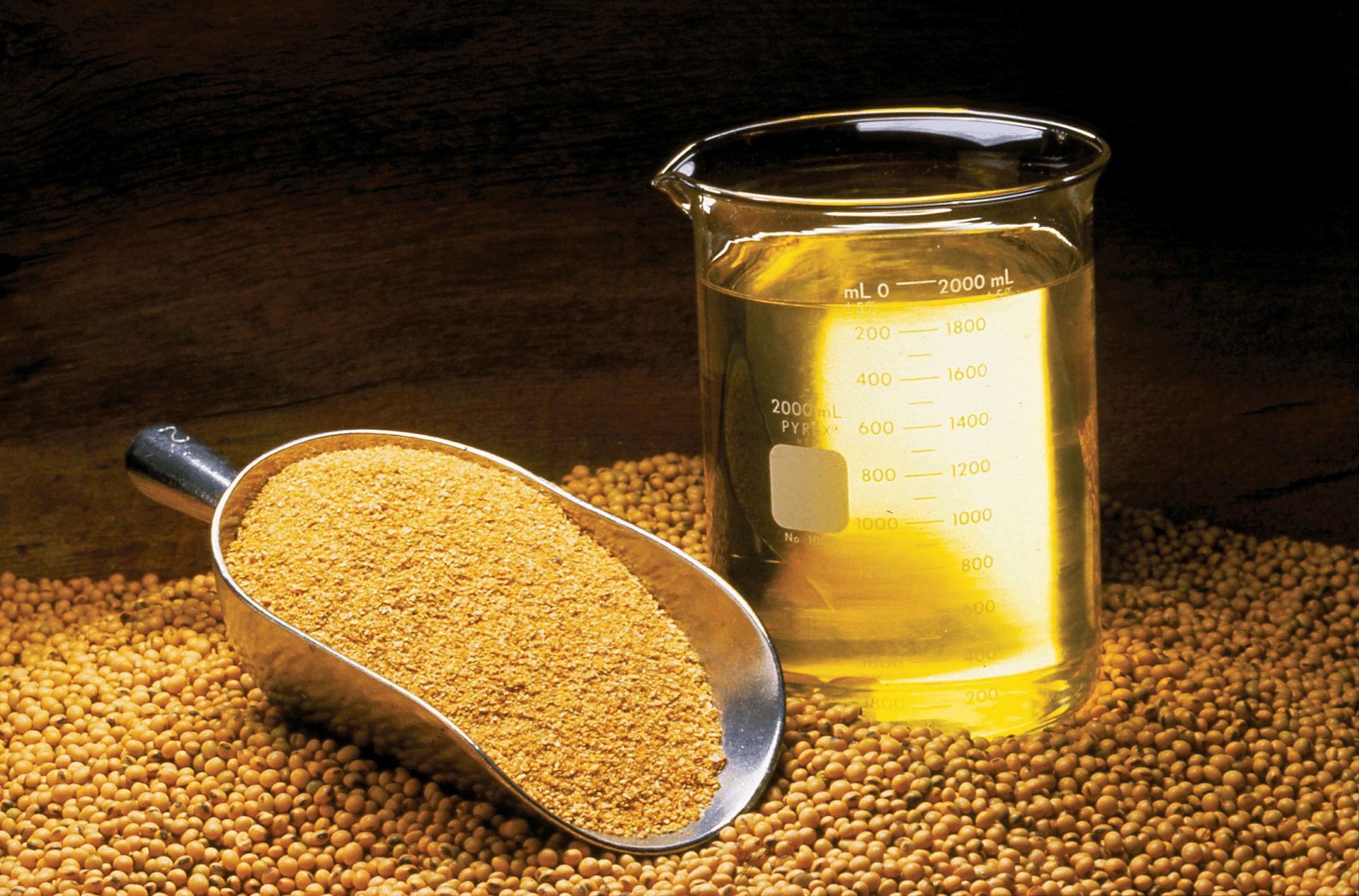 Soybean Oil Futures Guide – Contract Specifications, Soybean Oil Facts, Strategies & Seasonality
