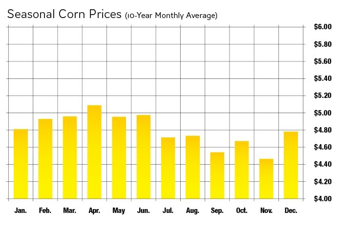 Corn Futures Guide - Contract Specifications, Corn Facts, and  Strategies