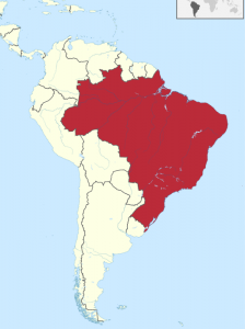 trading futures in south america